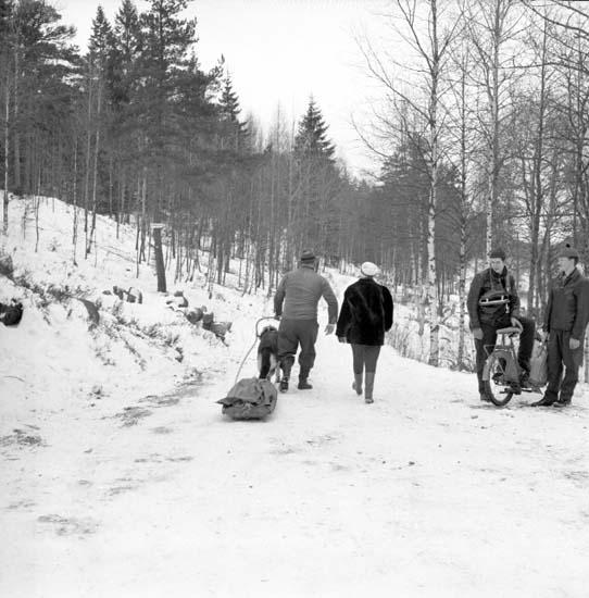 """Enligt notering: """"Skridskoåkning Bjursjön 13/12 -59""""."""