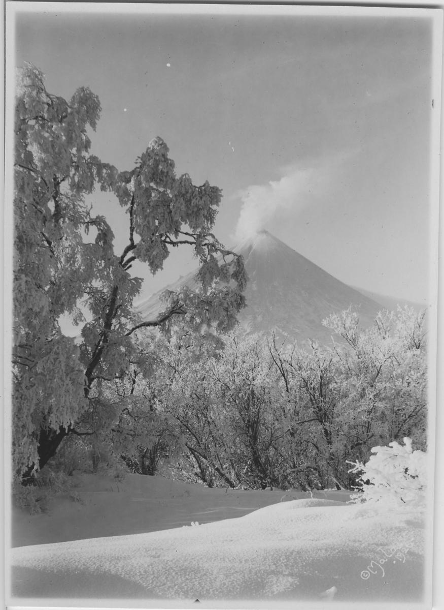 'Vulkanen Klutchevskaja, i förgrunden snötyngda träd, -41°C. :: (2) ::  :: Serie fotonr 4916-4930. :: Kartskiss fotonr. 4916:1 visar motivens läge.'