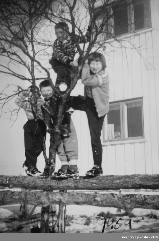 Fire barn fotografert utenfor huset til Albert Jolma i Østerbotn. De er Bjørn Malin, Ingrid Nymo, Kjell Nymo og Torbjørn Nymo.