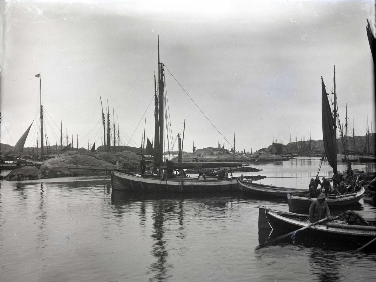 Småfartøy - havn