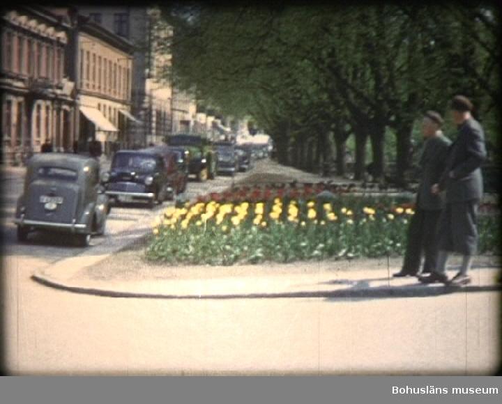 """1. S.S. Viken vid A.V. Rydholms grav 17/3 1954. 0003 Bengt Ryding lägger ned krans. Holger Rehnberg, Lars Rehdin, Gösta Brändstedt och längst till höger Carl-Fredrik Quirin. I bakgrunden Blomgatan 4 under byggnad.  0018 A. V. Rydholms grav.  2. Hus som ska rivas. Kvarteret Garvaren. Ridhuset, Ångön och vid Lilla Torget. 0022 Kvarteret Garvaren hörnet St. Nygatan-Kvarnbergsgatan. Längst bort hörnet mot Östergatan. 0029 Lilla Nygatan från Pastorsexpedition. 0039 Kvarnbergsgatan 4 gårdsidan. Där bodde i andra våningen Gunnar Adamsson som barn.  0041 Trapphus på Lilla Nygatan. 0107 Ridhuset. I bakgrunden Byggmästare Anders Erikssons Södra Drottninggatan 14-16. Där hyrde bl. andra Målerifirman Nilsson o Andersson, Frisör Thureskog o Ståhlklang och Elof Johanssons Tobak. 0120 Södra Drottninggatan 20-22 med Bröd, Brandts Bil, Emil Johanssons Mjölkaffär, Harry Gustavssons Grönsaker, Helsings Bageri och Washington Olssons Charkuteri. 0123 Ängön. Korsningen Asplundsgatan - Packhusgatan med Barnhemmet för flickor. 0131 Korsningen Packhusgatan-Södergatan. 0139 Kvarteret Ängön. 0141 Asplundsgatan österut. 0154 Arvid Högströms hus från Södergatan. 0202 Lilla Torget 1. 0205 Södra Kliniken. 0213 Västgötavägen österut med närmast Västgötavägen 6.  3. Vägras på del av vägsträckan till Listasskogen.  0215 Personbil följde med i raset.  4. Sprängning vid fyrarna. 0254 Sprängning vid fyrarna under vattnet. 0315 Torrlastfartyg ut mellan fyrarna.  5. Pålning med armeringsjärn vid Reningsverket.  0336 Rötkammaren.  6. Den nya traktorskopan i arbete. 0338 Nya traktorskopan (carterpiller) i arbete.  7. Avlopp Kyrkans äng. Sommarhemmet.  0350 Anders Knapes väg längst västerut 0353 I gropen Robert Samuelsson till vänster och i mitten Henning """"TT"""" Johansson.  8. Nya filter till vattenverket.  0356 Vattenverket Marieberg. 0422 Inlastning av filtersand till verket.  9. Kajarbeten vid Badö, provbelastning av påle.  0431 Förberedelse för besiktning. 0456 I bakgrunden Brattåsbergen. 0510 Provbelastn"""