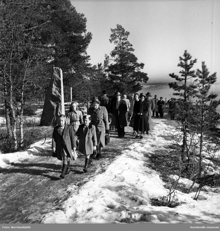 Barn och vuxna på vårpromenad på Norra berget.