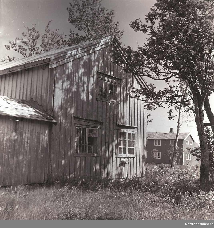Side av huset med utbygg, stående panel. Foran stort tre. I bakgrunnen en bygning. Sommer.