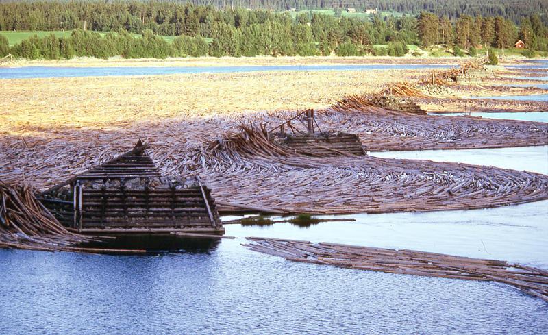 Foto av tømmerstokker i elva, som holdes igjen av steinkar med lenser mellom.