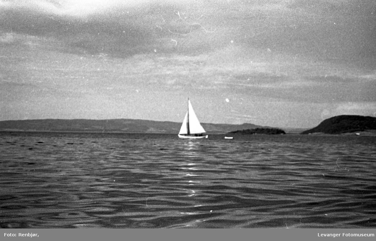 Levangersundet. Seilbåt på fjorden med Børøya i bakgrunnen.