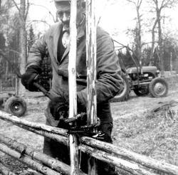 Hjalmar Ek i Bäckgöl bygger en gärdsgård.