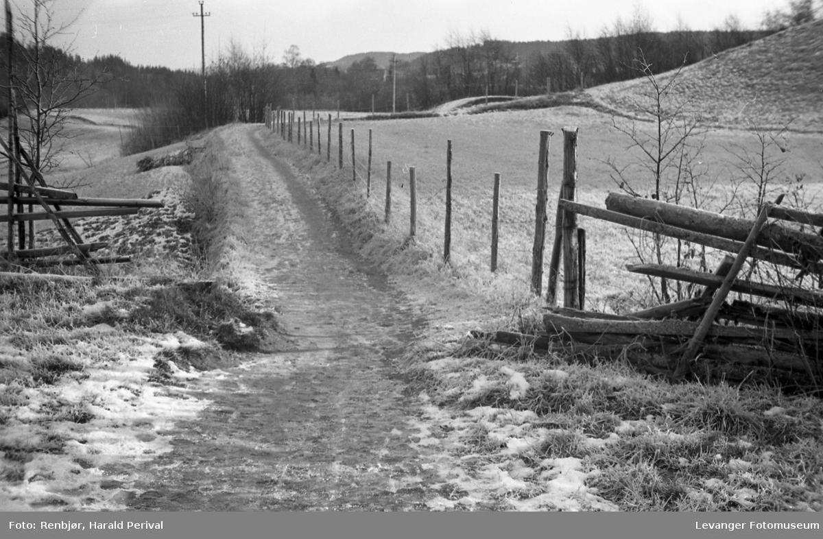 Vei langs Levangerelva.