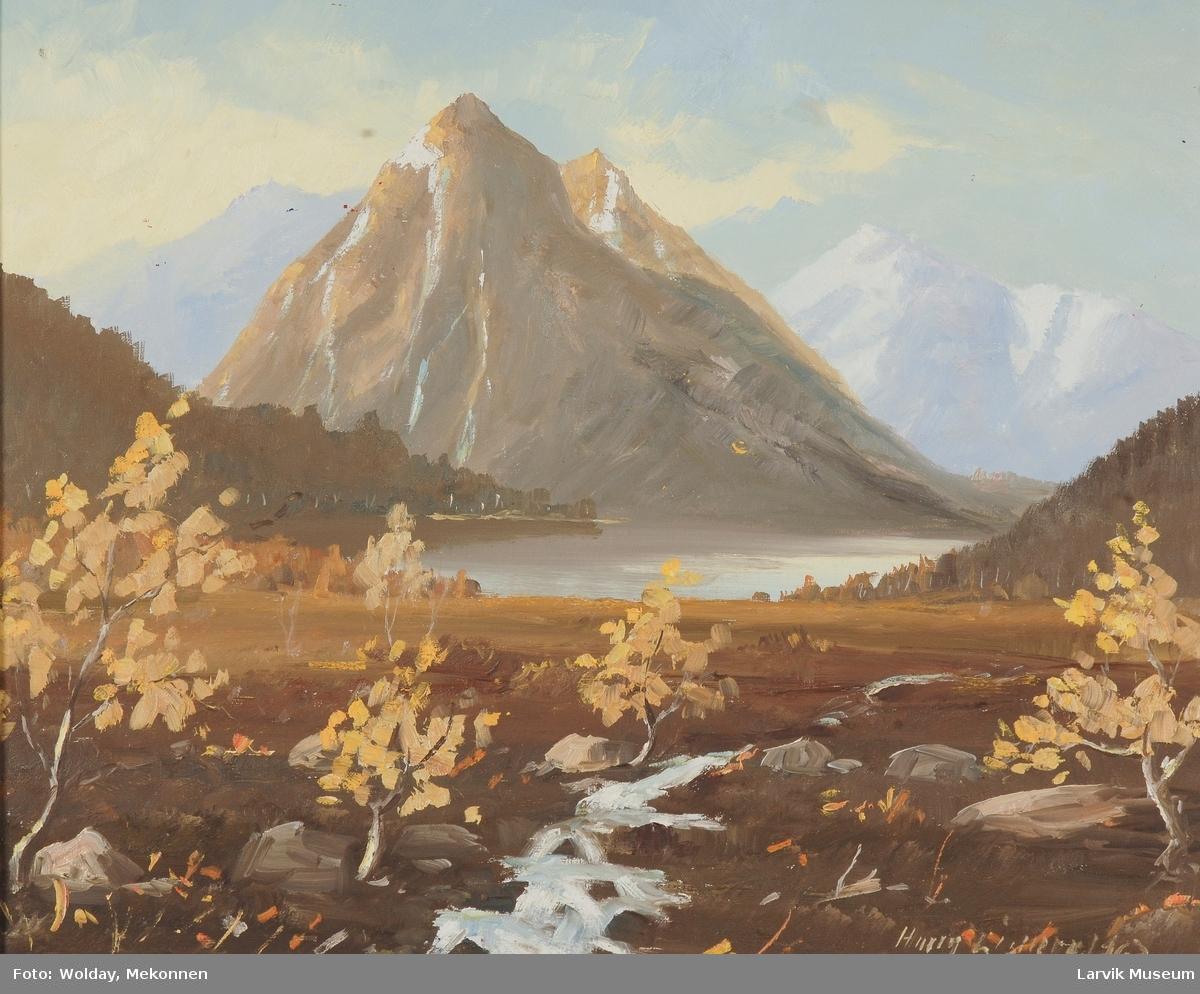 Tromsdalen i Troms.
