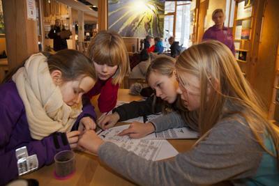 Foto av elever som løser oppgaver om rovdyr