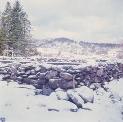 Dokumentasjons-serie av gjenoppføringa av Ytterlandstova på