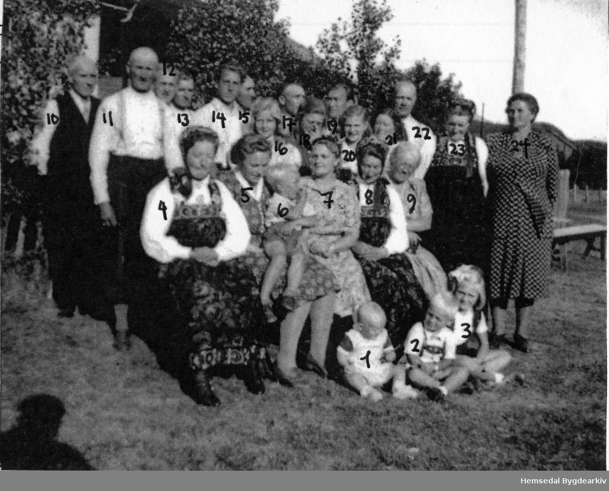 Gravferdsdagen til John W. Wøllo frå garden Søre Vøllo, 85.1, i Hemsedal i 1947. Fullstendig namneliste på personane er akrivert i Hemsedal Bygdearkiv.
