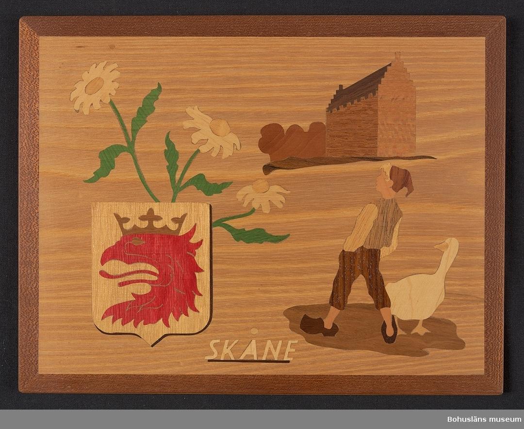 Landskapstavla med namnet SKÅNE med landskapsvapnet, en grip krönt av  hertiglig krona och ikoniska motiv typiska för landskapet inlagda i intarsiateknik av fanér i olika ljusa och mörka träslag. Några mindre bitar är infärgade i rött och grönt. Lackad.  Motiven avbildar blommande prästkrage, Glimmingehus, och Nils Holgersson med gåsen Akka.  Intarsian är skuren så att träets naturliga mönster skickligt medverkar till och understryker motivens former och volymer.  Beskrivande etikett av papper på baksidan: Landskapstavla SKÅNE. Motiv: Vapnet, Prästkrage, Glimmingehus, Gåsapåg. Träslag: Alm, Platan, Silkoek, Valnöt, Lönn, Padouk, Guarana, Jakaranda, Päron, Kelobra. På baksidan en upphängning.