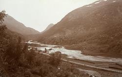 Nestadvoll i Drivdalen