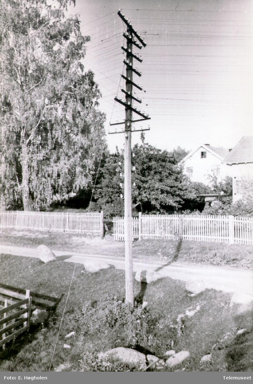 Telefonstolpe med 9 traverser og linjer i kryss samt isolatorer nedover på stolpen. Denne stolpen stod på kursen Romedal-Vallset ved Hågenrud i Stange kommune, Hedmark.