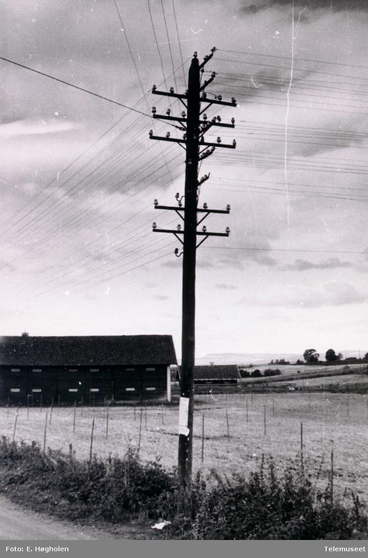 Telefonstolpe med linjekryss. Ved Skjerve Huse Handel, øst for Herredsvang.