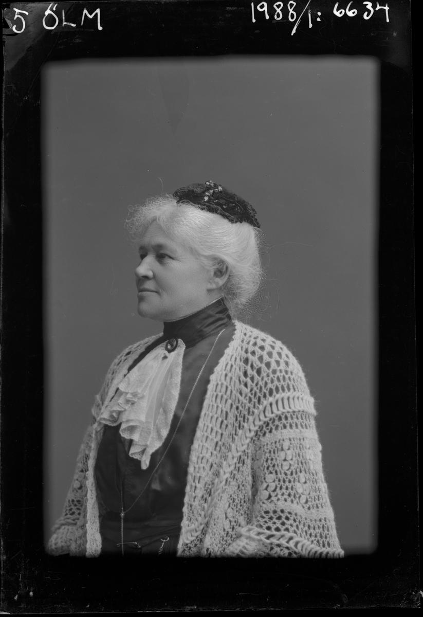 Porträtt från fotografen Maria Teschs ateljé i Linköping. 1913. Beställare: Möller.