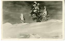 Vinter i Norge.