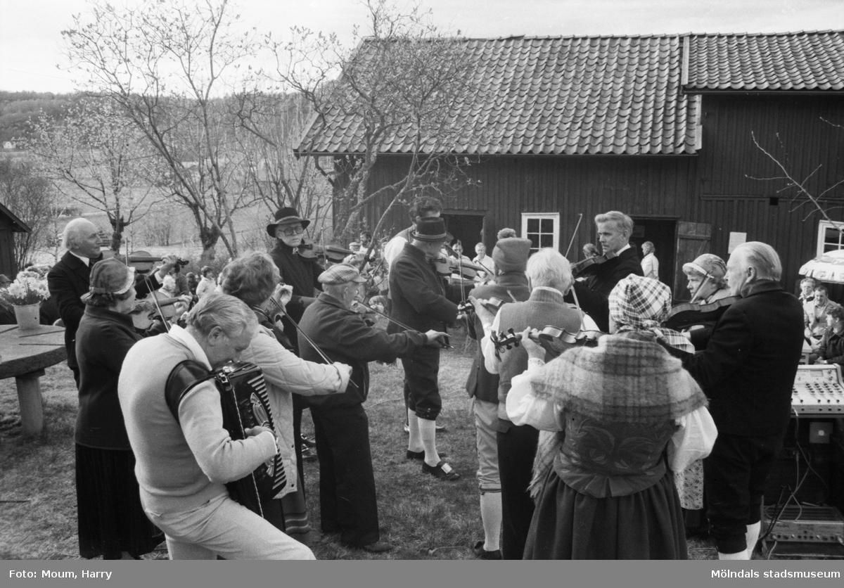 Almåsgården och Lindome hembygdsgille anordnar sommarkafé på Börjesgården i Hällesåker, år 1984. Hällesåkers Spelmanlag spelar musik.  För mer information om bilden se under tilläggsinformation.