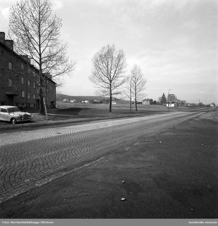 Bilder från Vinkeltået mot Nacksta och området där det nya bostadsområdet ska byggas.
