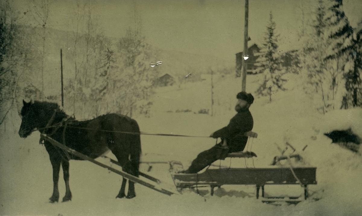 Prospektkort av Andreas Hagen sittende på en slede med hest.