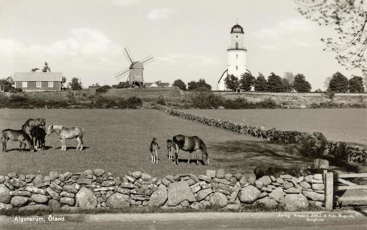 Väderkvarnen på bild nertagen 1938 ifrån Algutsrum och flyttad till Köpingsvik.