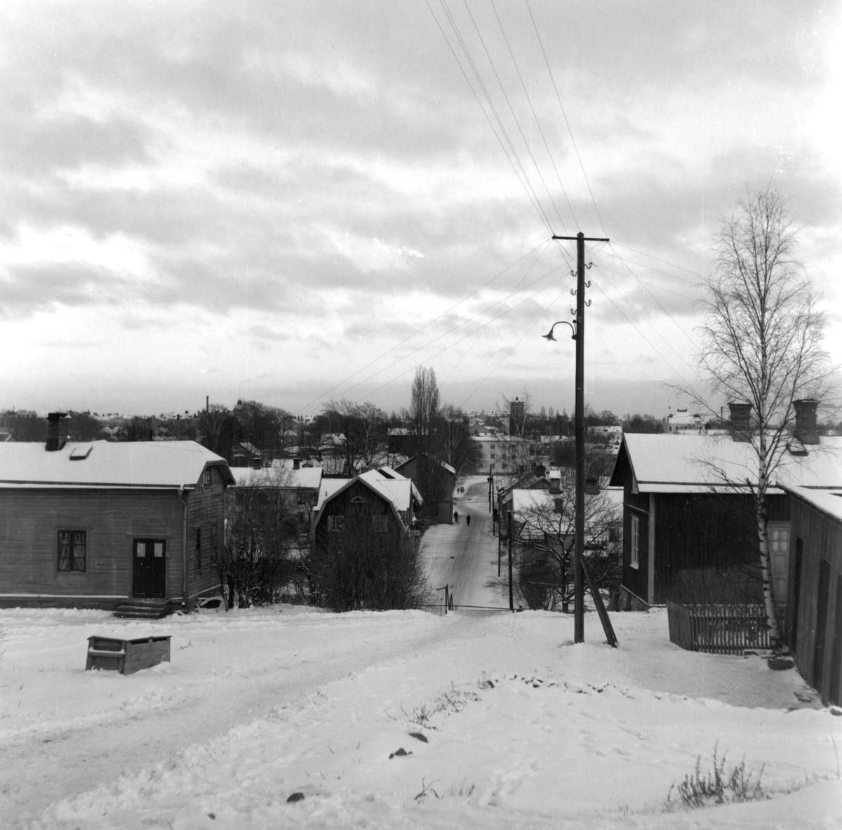 Vikengatan sedd från Kvarnberget 1954.