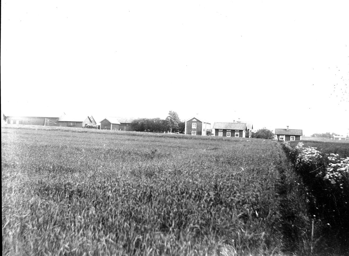 Landskap och gård. Fotograf okänd.
