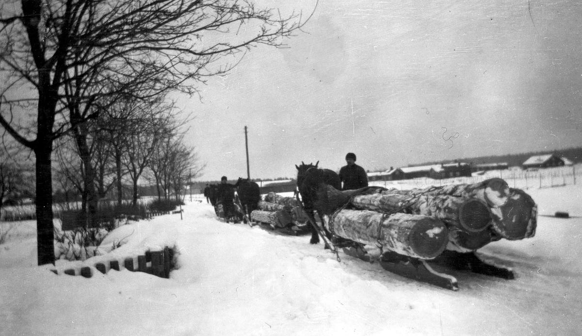 Timmerlass genom Axmarby med hästar