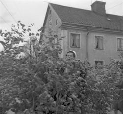 Studenterna tredje dagen, 1950.En student körs på lövad kär