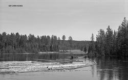 Fra Dalsæterdammen i elva Juråa i Nord-Odal i Hedmark. Fotog