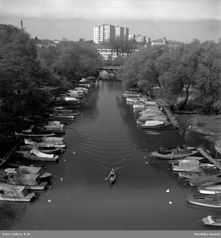 Pålsundet, Stockholm. En ensam kanotist mellan förtöjda fritidsbåtar. Bebyggelse på Reimersholme i bakgrunden.