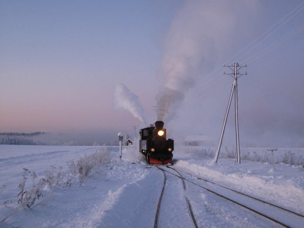 Januar_2010_minus_20_Fossum_stasjon._Foto._R.Andens.jpg