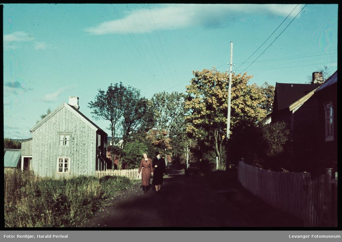 Fra Gamle kongevei i Levanger.