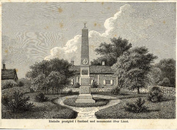 Träsnitt. Råshults prästgård med obelisken - monumentet över Carl von Linné., invigt 1866.