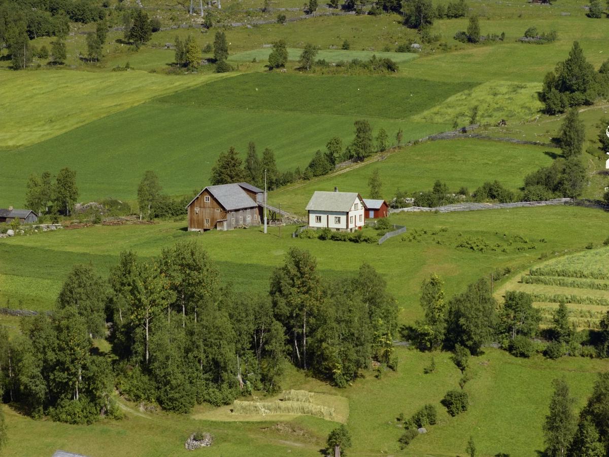 Nyhus. Kulturlandskap. Hvit bygning,rødbrunt uthus. Hage. Dyrka mark