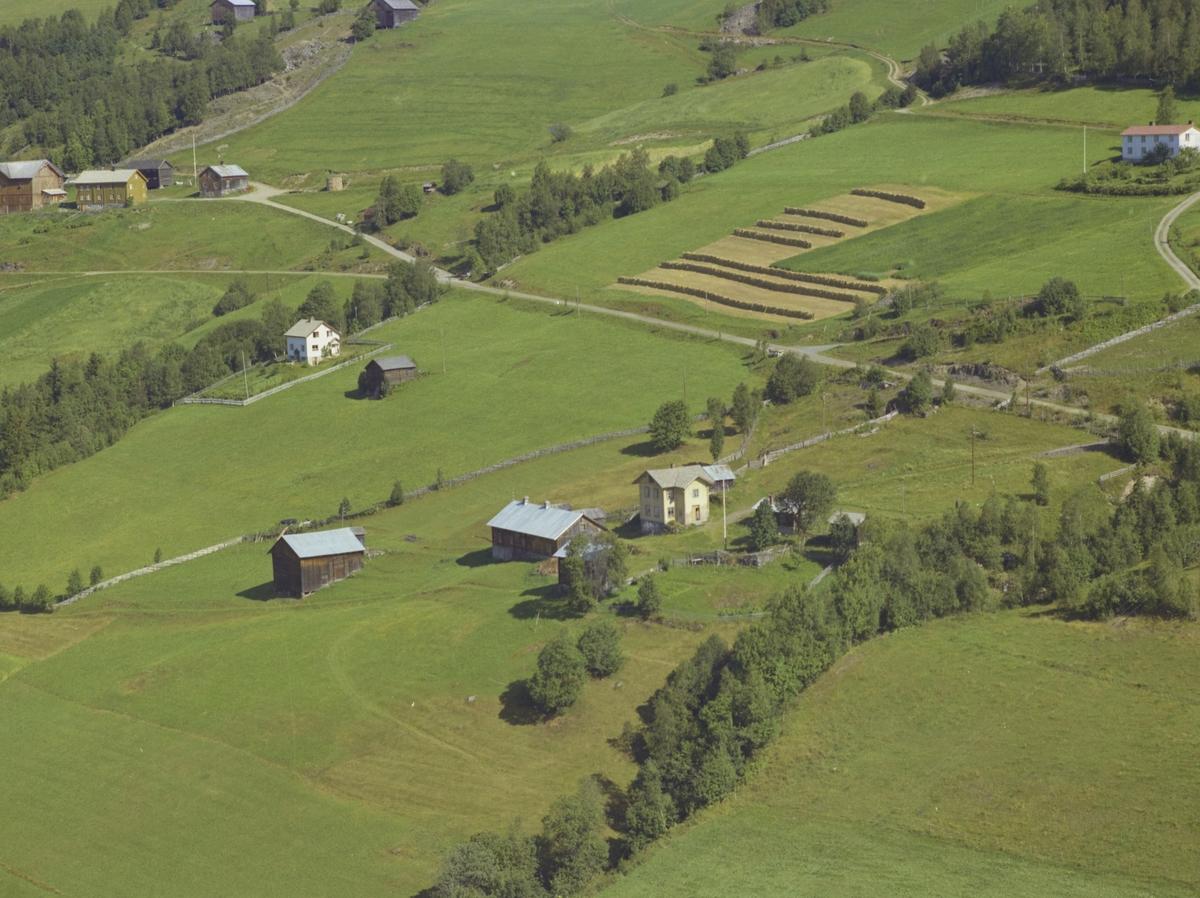 Øygarden, småbruk, hesjer, Brettingen gård bak til venstre, hvitt bolighus, Bødalen, Vestre Gausdal