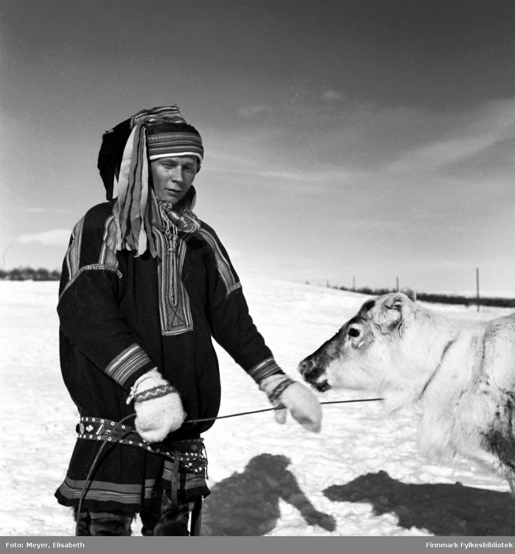Aslak Johansen Eira. Fotografert i Kautokeino-området i perioden 1939-40. Aslak holder en rein han muligens har fanget inn med lasso. Vinterlandskap.