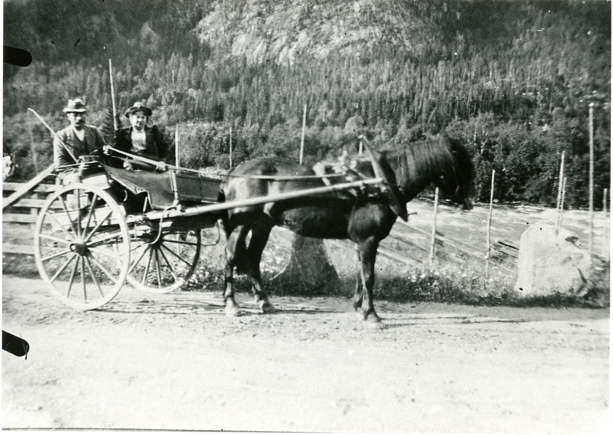 Ole Dølvesæter, 1889.