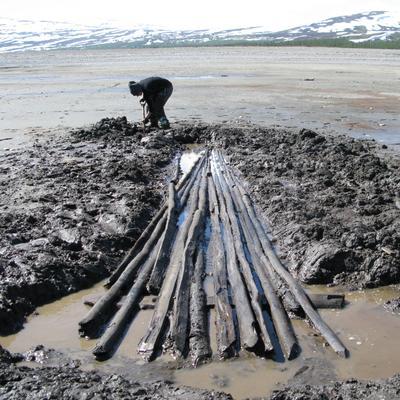 Utgraving av hel sløe fra Tesse, datert til 12-/1300-tallet.