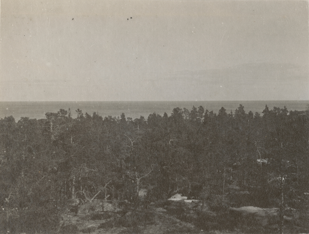 Naturbild från berget med skog och hav.