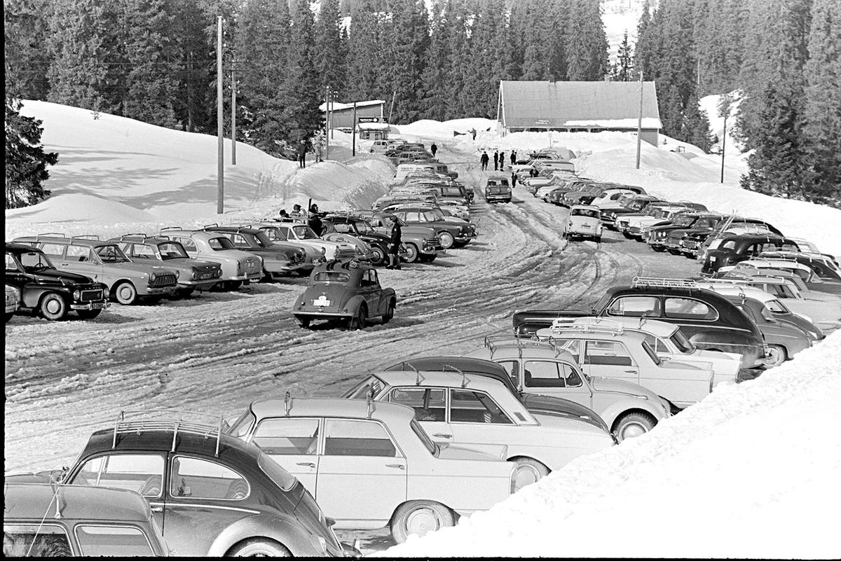 Gåsbu,parkeringsplass,personbiler,vinter.