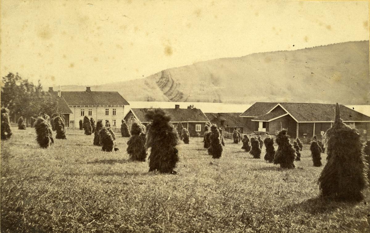 Gard ved Randsfjorden i Oppland