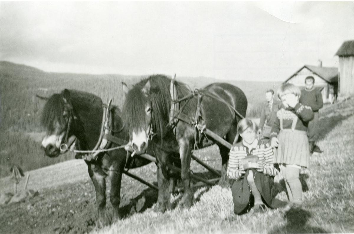 Nikolai Bøhle og Kristoffer, Kari og Gunn Lundene.
