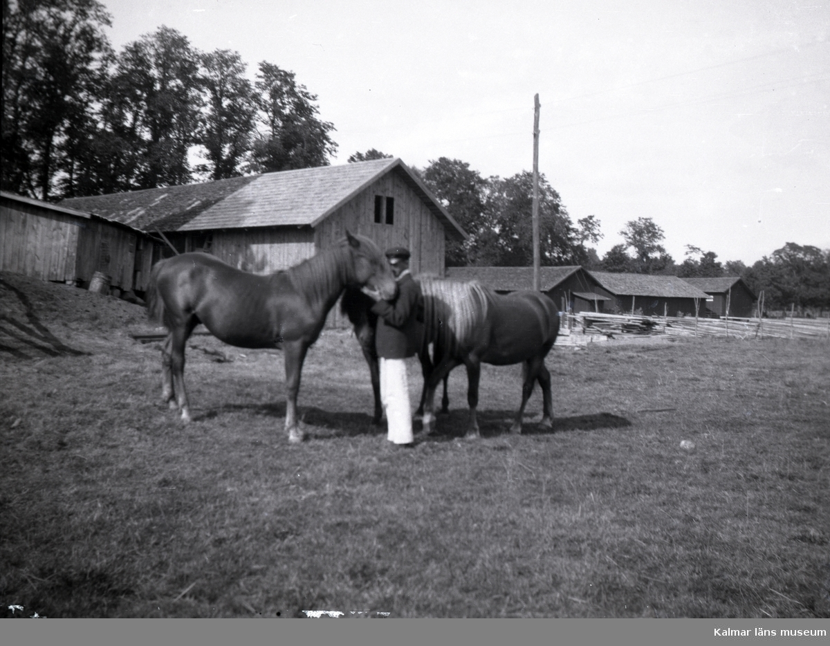 En man med några hästar i närheten av Tuna gård.