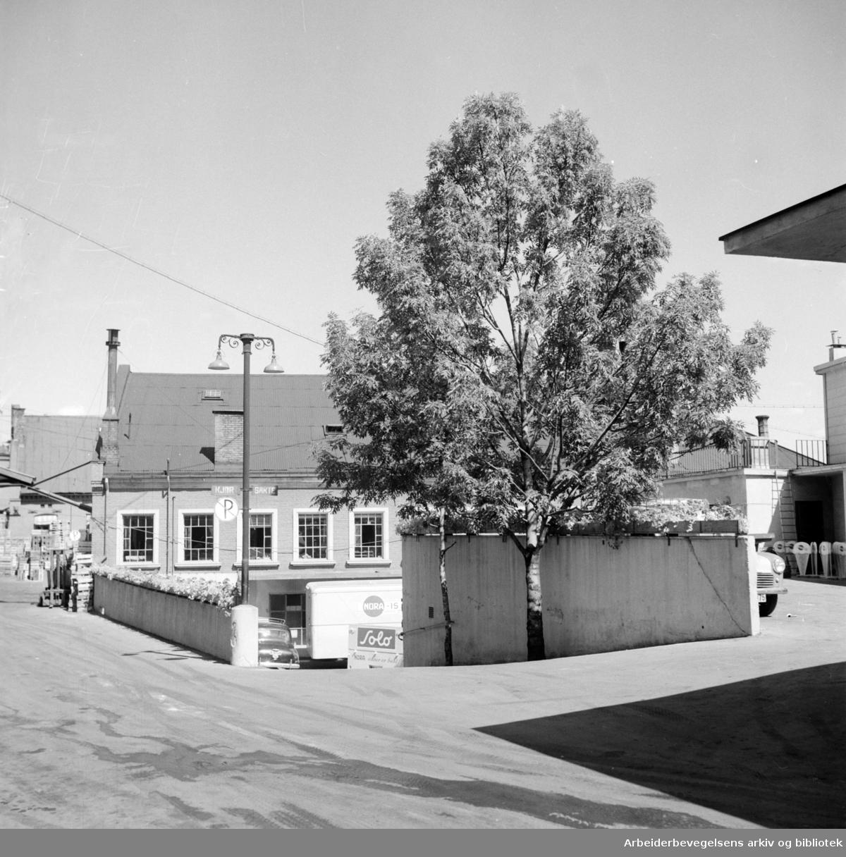 Nora Fabrikker med grøntanlegget utenfor. Juli 1955