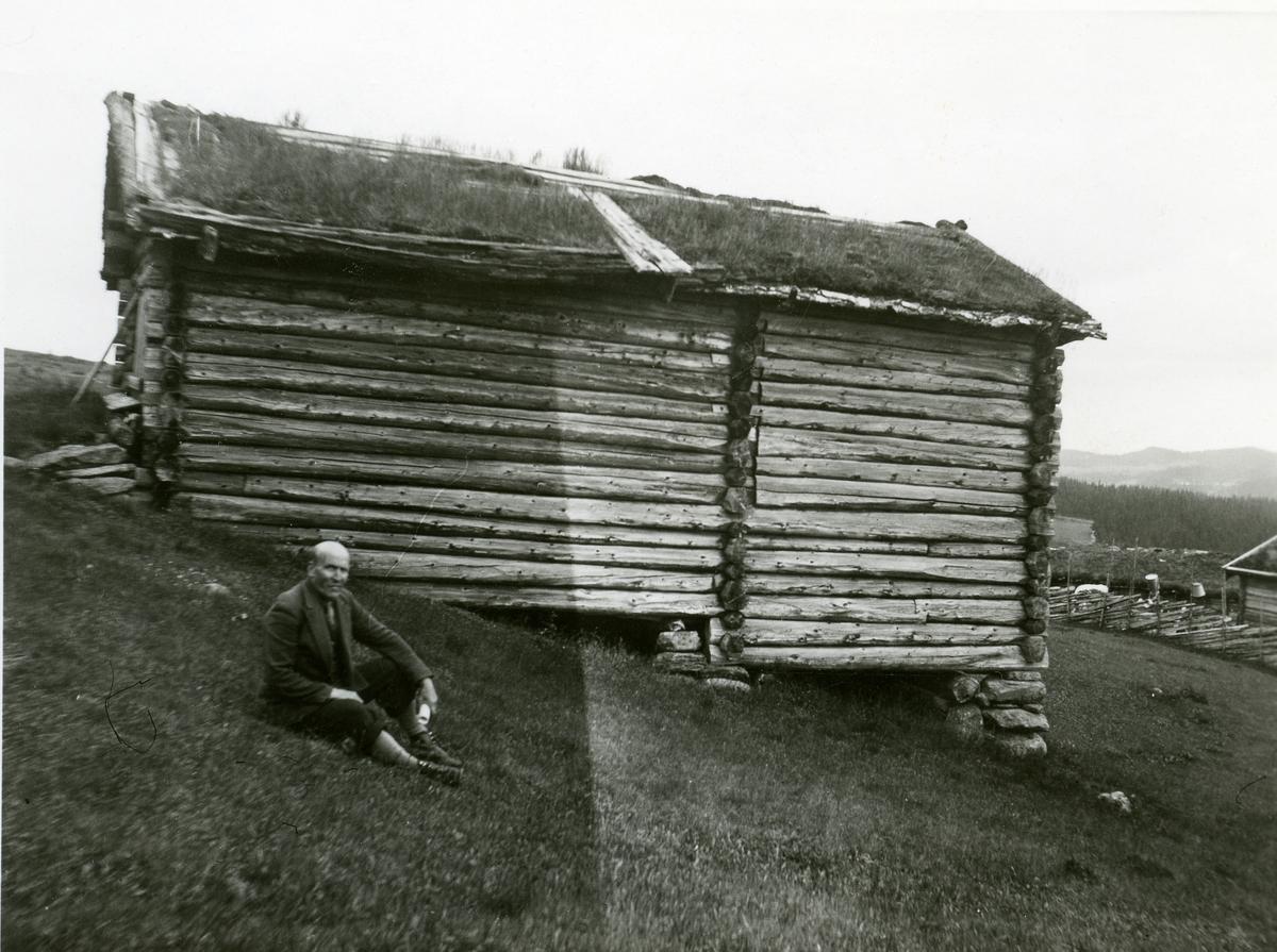 Tømmerløe på Turibrøtasetra på Ølnesetrane.
