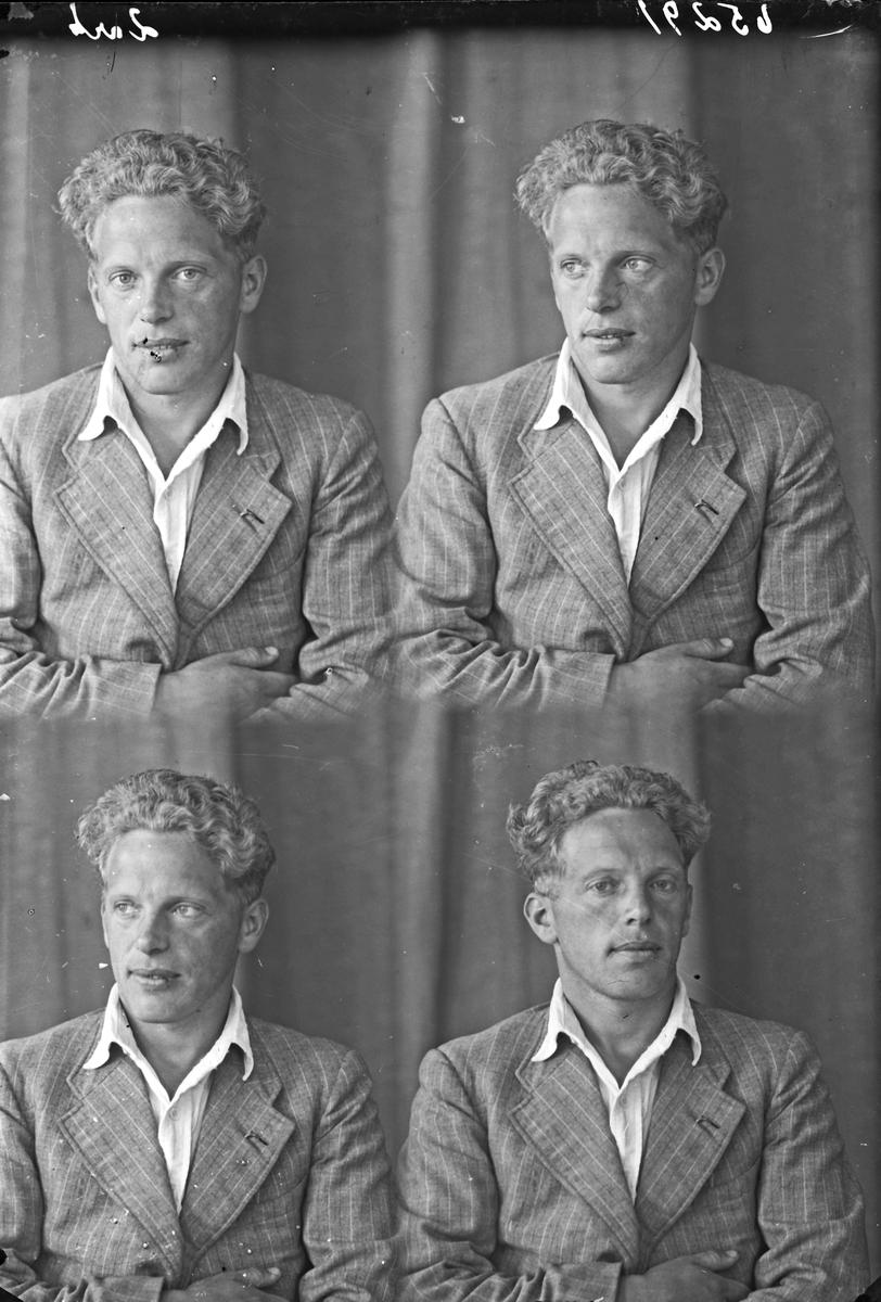 Portrett. Ung mann. Bestillt av Olav Stava. Aakrahavn.