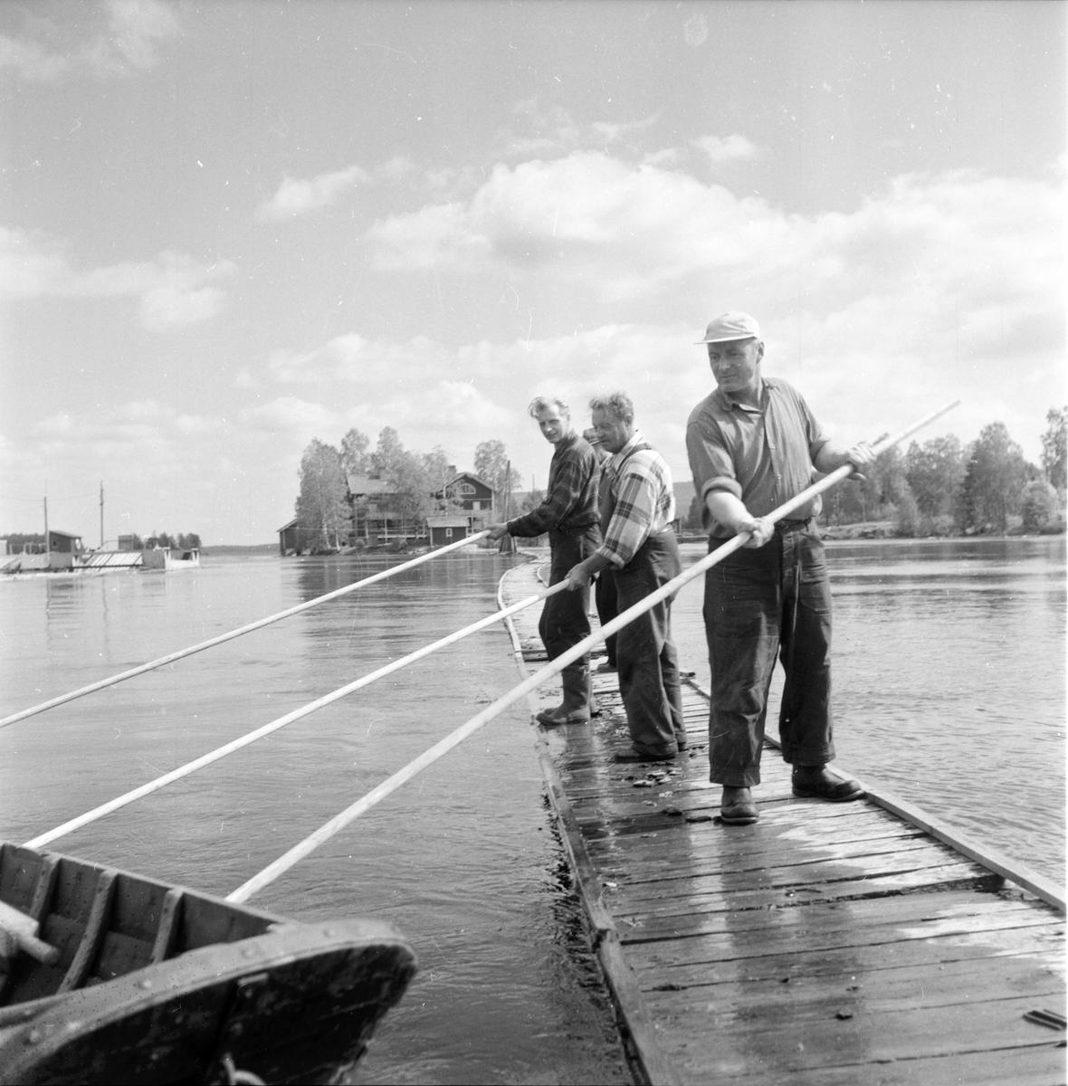 Landafors, Flottningen, 1 Juni 1960
