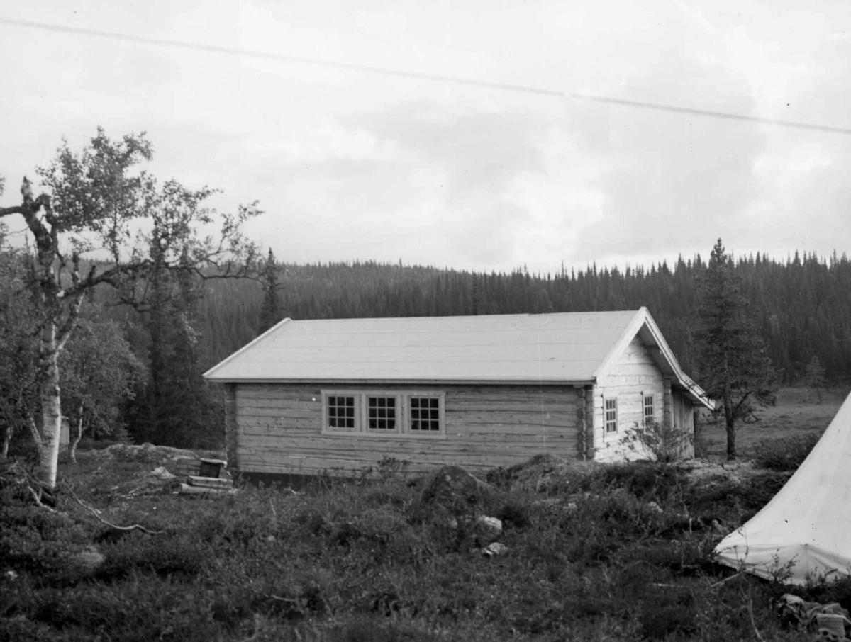 Lillehamme og Fåberg Yrkesskole, Fåberggata 152. Lafting av tømmerhytte på skolens tomt.