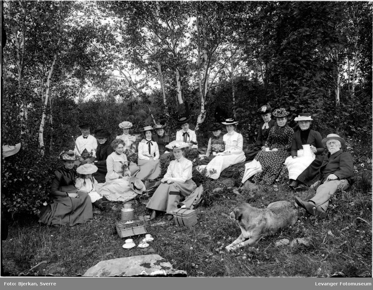 Piknik i bjørkeskogen,